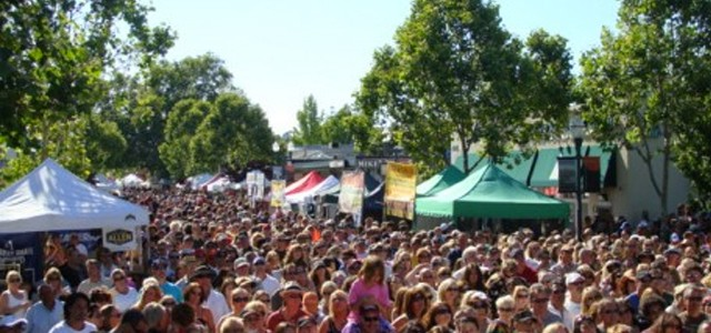 2013 Novato Art and Wine Festival