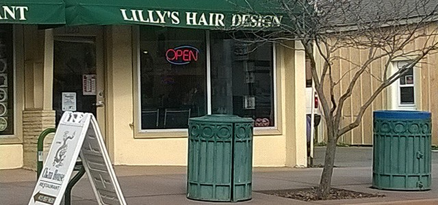 Lilly's Hair Design