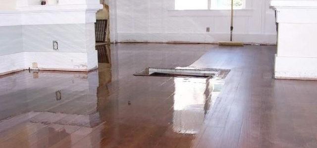 All Phase Hardwood Floors