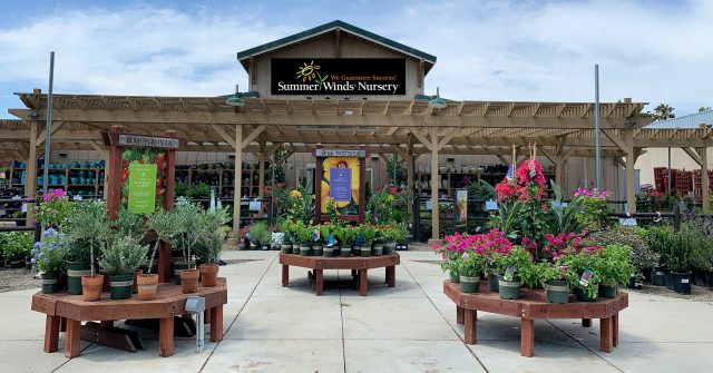 SummerWinds Nursery supports gardening success with new location in Novato
